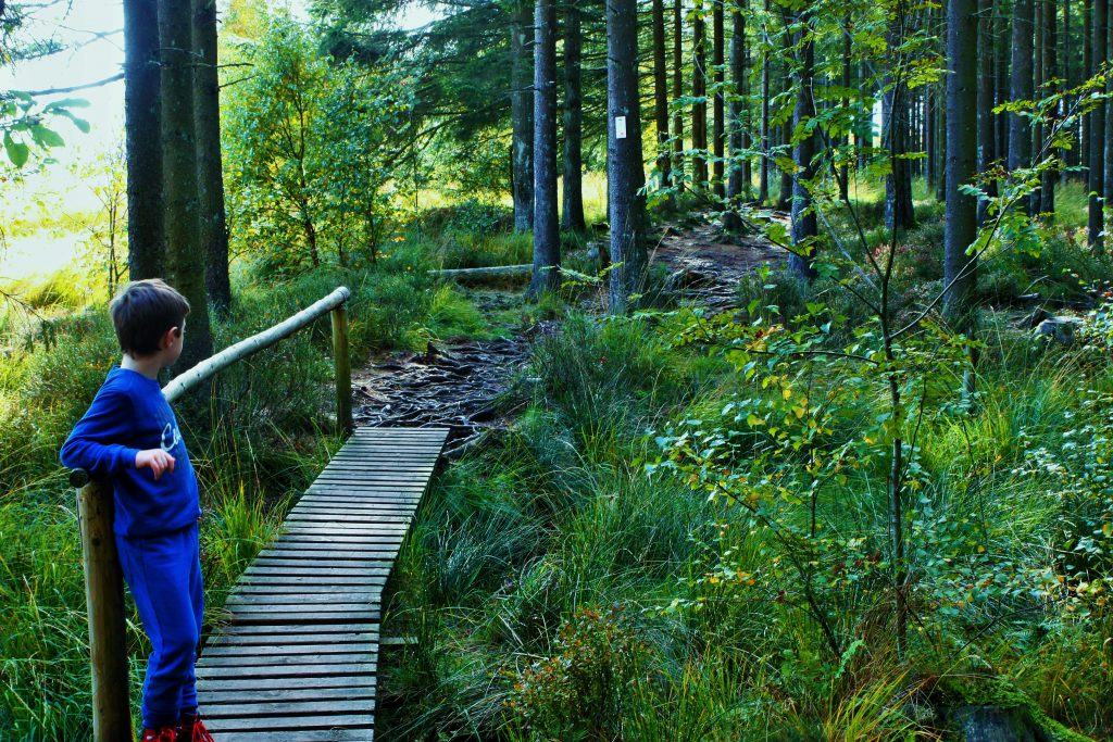 originele wandeling les 2 vallees pad door bos
