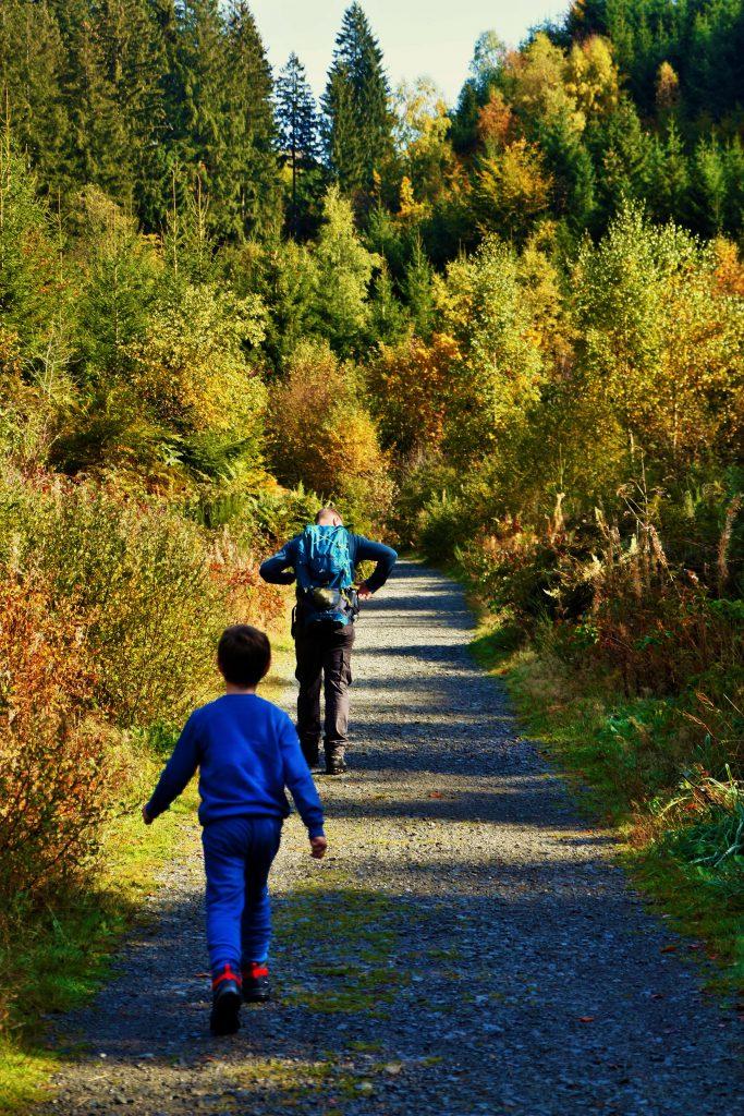 originele wandeling les 2 vallees pad in het bos