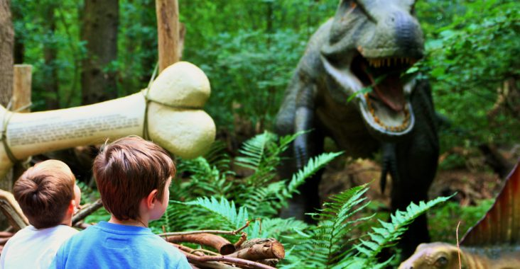 dinobos t-rex bot dino dierentuin