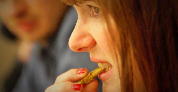 dare dinner geroosterde krekel eten