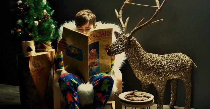 merry x-mas santa claus boek hert kerstboom kerstmis fotoshoot koekjes