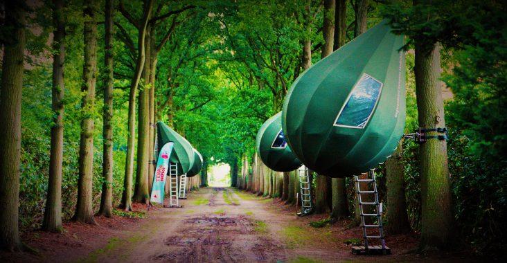 uniek kamperen tent boom boompit bornem originele overnachting
