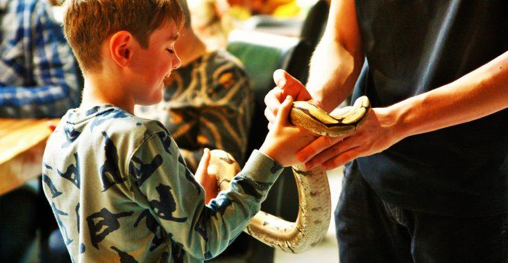 Breda Reptielenhuis de Aarde originele uitstapjes kinderen slang