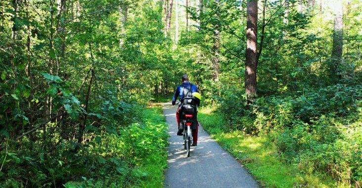 ijsjeroute kasterlee fietstocht ijsjes kabouterbos originele uitstapjes met kinderen fietsen door het bos